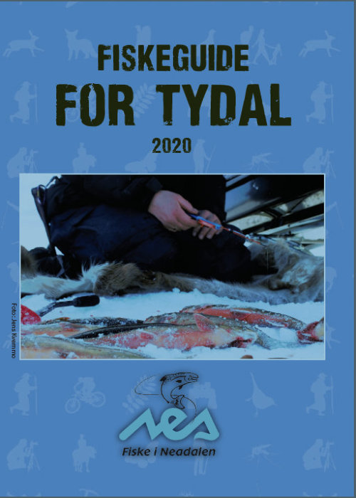 Åpner PDF brosjyren Fiskeguide for Tydal 2020
